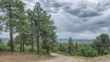 1350 Rincon Ridge Road - Photo 35