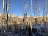 TBD Meadow Drive - Photo 12