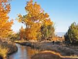 59346 Spring Creek Road - Photo 14