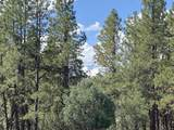 TBD Antler  Lot 251 Place - Photo 1