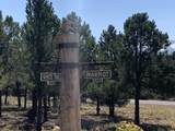 TBD Antler  Lot 251 Place - Photo 20