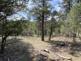 TBD Antler  Lot 251 Place - Photo 6