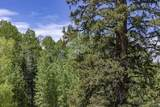 TBD Elk Run Road - Photo 4