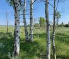TBD Panorama Lane - Photo 3