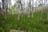 Lot 5 Sheridan Trail - Photo 11