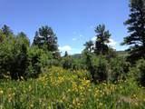 TBD Green Meadows Lane - Photo 13