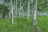Specie Wilderness Ranch - Photo 10