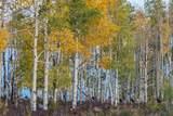 tbd East Specie Mesa - Photo 16
