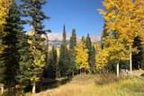 27 Spruce Way - Photo 43