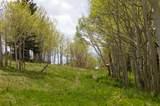 Lot 5 Sheridan Trail - Photo 9