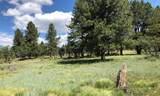 ParcelsA&B Iron Springs Mesa - Photo 10