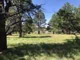 ParcelsA&B Iron Springs Mesa - Photo 32