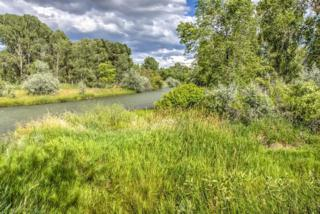 TBD Hwy 550 South, Montrose, CO 81401 (MLS #34378) :: Nevasca Realty
