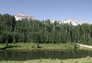 Lot 10 The Preserve #10, Telluride, CO 81435 (MLS #34541) :: Nevasca Realty