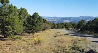675 Pine Drive, Ridgway, CO 81432 (MLS #34591) :: Nevasca Realty