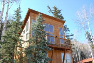 562 Society Drive, Telluride, CO 81435 (MLS #34670) :: Nevasca Realty