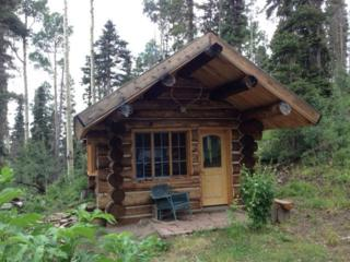 95 Forest Lane #15, Placerville, CO 81430 (MLS #34879) :: Nevasca Realty