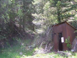 TBD Silver Pick Road #0, Placerville, CO 81430 (MLS #34881) :: Nevasca Realty