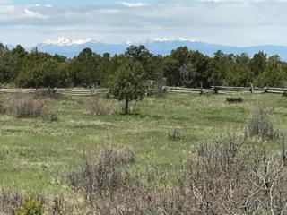 TBD County Road 44Z S Lot T1, Norwood, CO 81423 (MLS #34882) :: Nevasca Realty
