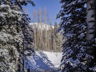 115 Cabins Lane #15, Mountain Village, CO 81435 (MLS #34894) :: Nevasca Realty