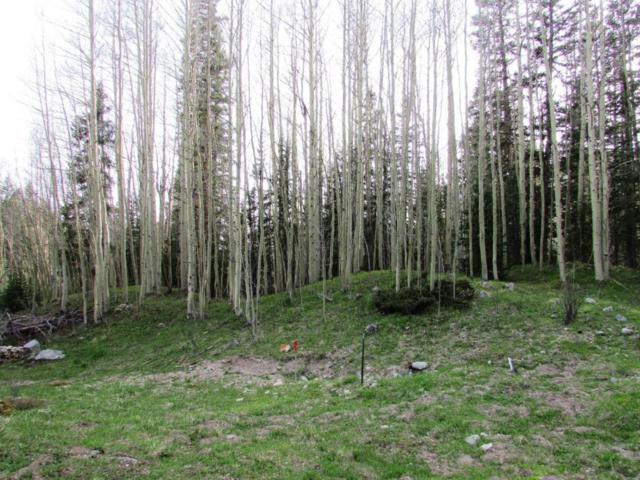 SITE 27 Backwoods, Ophir, CO 81426 (MLS #32632) :: Telluride Properties