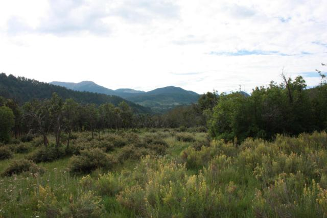 TBD 56v RD Lot 4, Alder Canyon Ranches #04, Placerville, CO 81430 (MLS #32708) :: Nevasca Realty