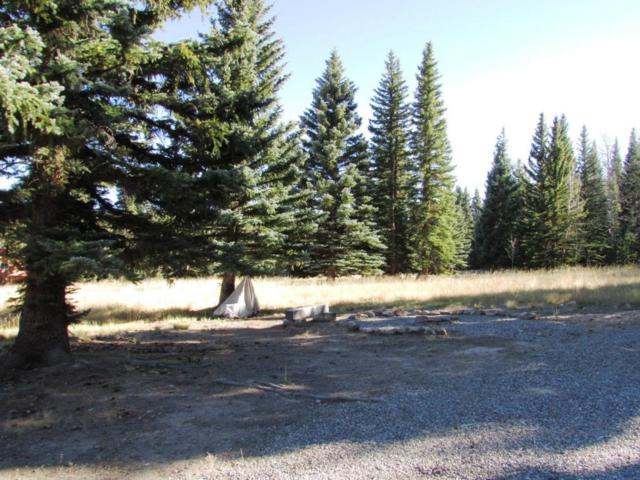 110 Balsam, Out Of Area, CO  (MLS #33146) :: Telluride Properties