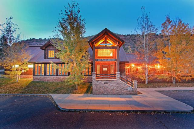 22332 Highway 145, Placerville, CO 81430 (MLS #33250) :: Telluride Properties