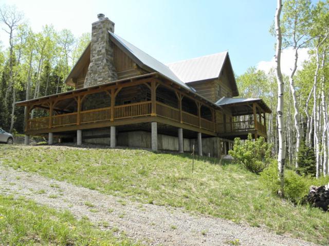 1419 Leopard Creek Drive, Placerville, CO 81430 (MLS #33956) :: Telluride Properties