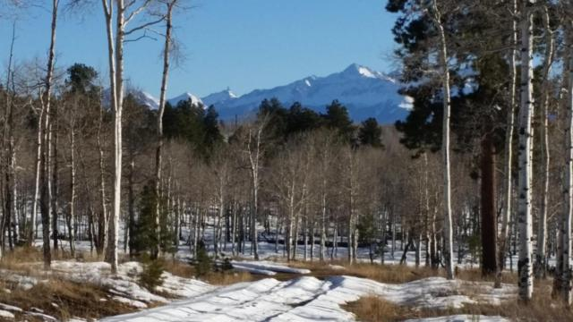 TBD Mckenzie Springs Ranch Road #12, Placerville, CO 81430 (MLS #33996) :: Nevasca Realty