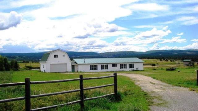 39849 Eagle Drive, Norwood, CO 81423 (MLS #34268) :: Nevasca Realty