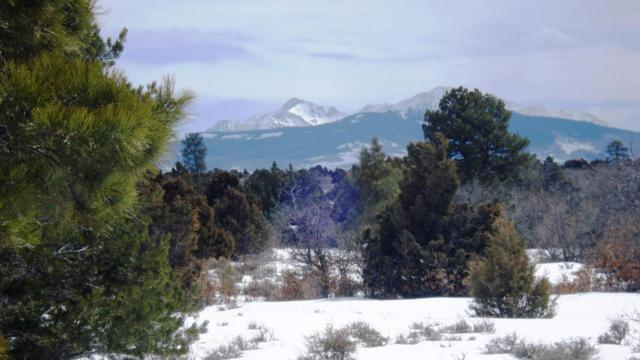 Lot 11 Lot 11 Nelson Ditch Road #11, Norwood, CO 81423 (MLS #34642) :: Nevasca Realty