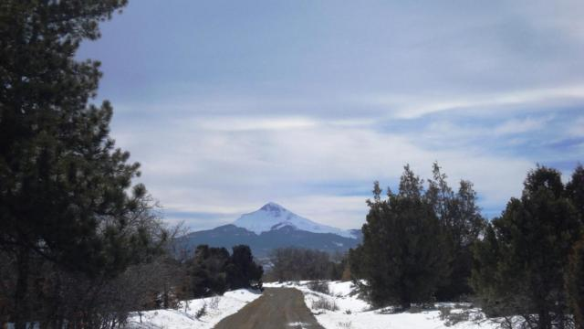 Lot 8 Nelsen Ditch Road, Norwood, CO 81423 (MLS #34644) :: Nevasca Realty