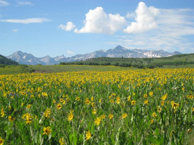 3303 County Road 58P 4 & 7, Placerville, CO 81430 (MLS #34795) :: Telluride Properties
