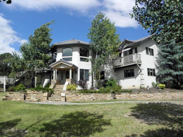 2511 Ponderosa Drive, Ridgway, CO 81432 (MLS #34802) :: Nevasca Realty