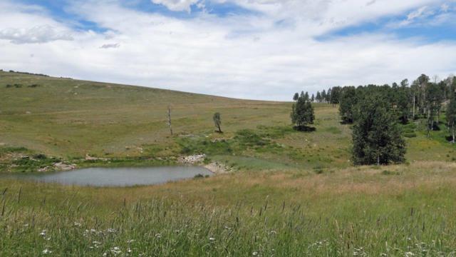 9B Spruce Mountain Lane, Ridgway, CO 81432 (MLS #34851) :: Nevasca Realty