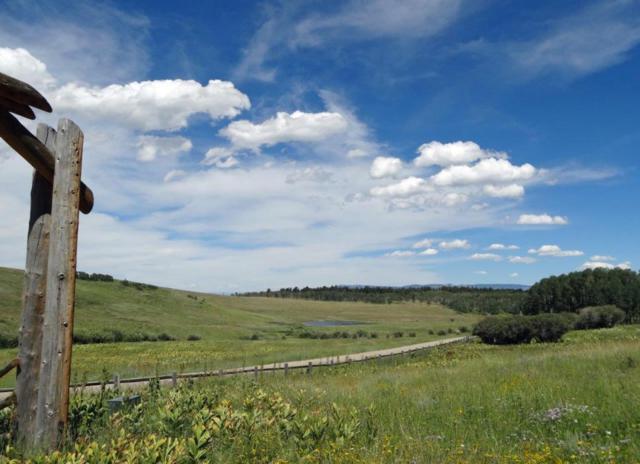 2B Spruce Mountain Lane, Ridgway, CO 81432 (MLS #34854) :: Nevasca Realty