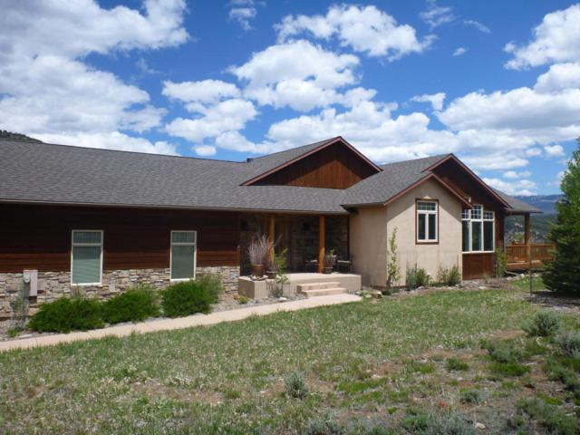 221 Quarterhorse Lane, Ridgway, CO 81432 (MLS #34889) :: Telluride Properties
