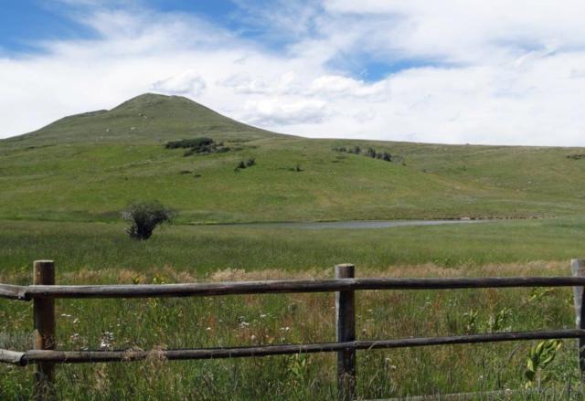 3B Spruce Mountain Lane, Ridgway, CO 81432 (MLS #34896) :: Nevasca Realty
