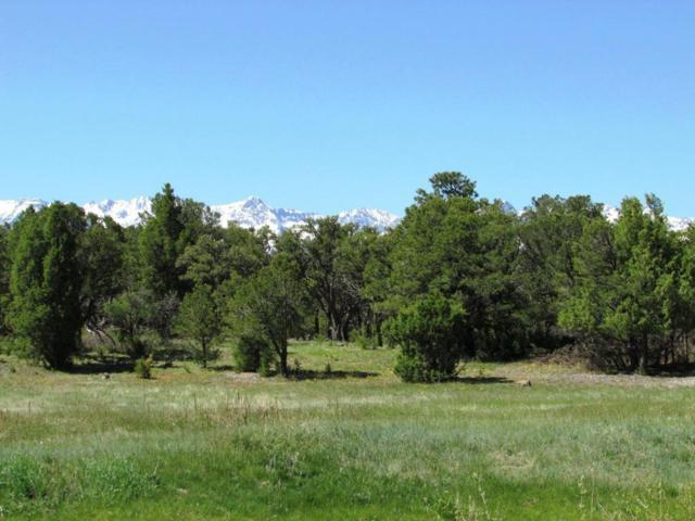 354 Pine Drive B7, Ridgway, CO 81432 (MLS #35033) :: Nevasca Realty