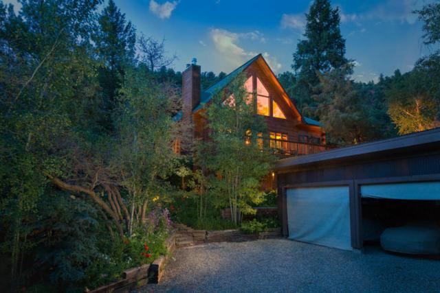 21938 Highway 145, Placerville, CO 81430 (MLS #35043) :: Telluride Properties