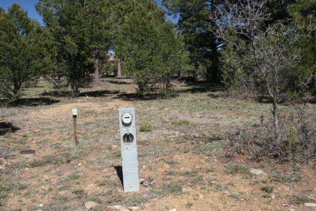 901 Ponderosa Drive, Ridgway, CO 81432 (MLS #35050) :: Nevasca Realty