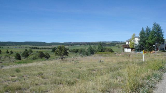 TBD Pioneer Circle Drive #6, Norwood, CO 81423 (MLS #35051) :: Nevasca Realty
