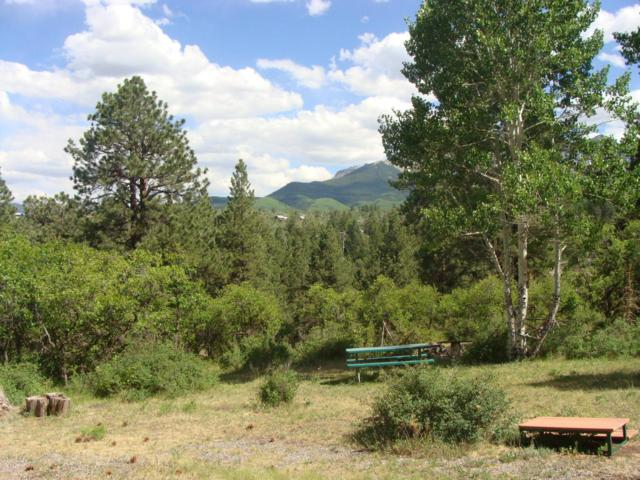 TBD Forest Hill Road #8, Ridgway, CO 81432 (MLS #35157) :: Nevasca Realty