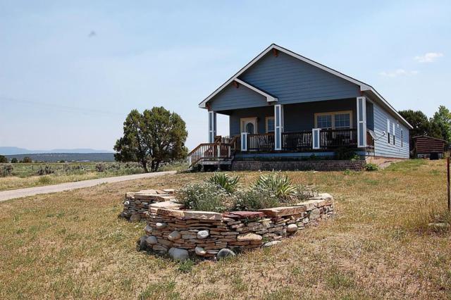 24 Buckboard Drive, Norwood, CO 81423 (MLS #35163) :: Telluride Properties