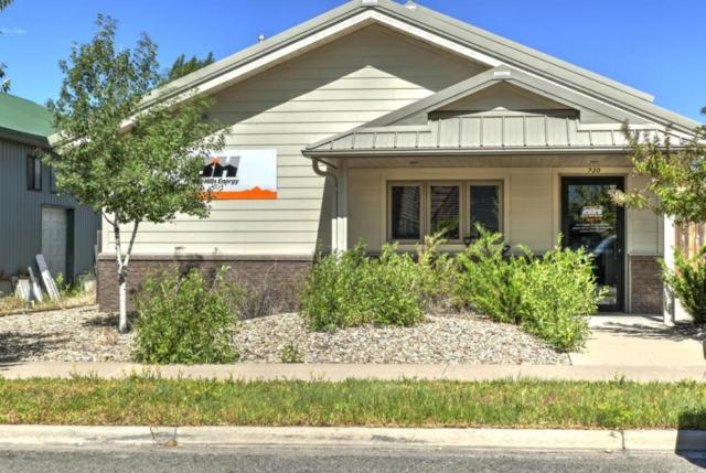 730 N Cora Street, Ridgway, CO 81432 (MLS #35209) :: Telluride Properties