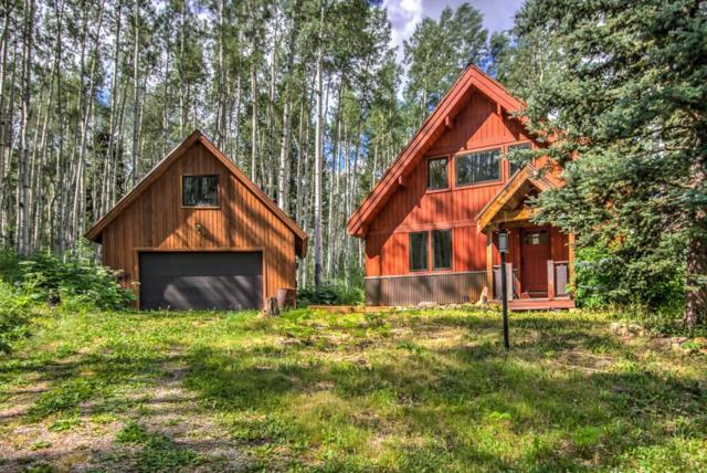 654 Woods Road, Placerville, CO 81430 (MLS #35221) :: Nevasca Realty