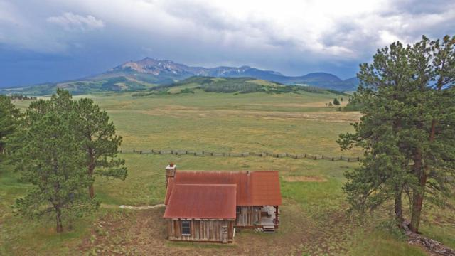 1541 County Road 60U, Placerville, CO 81430 (MLS #35260) :: Telluride Properties