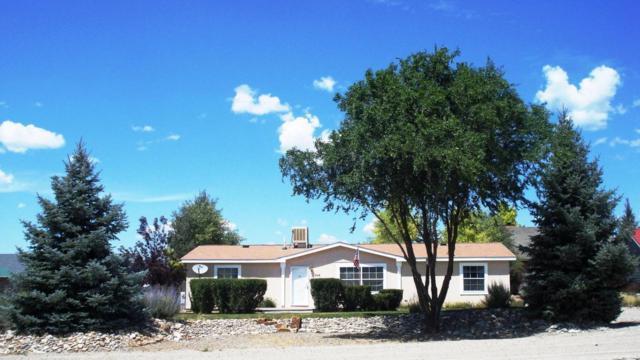 142 Buckboard Drive, Norwood, CO 81423 (MLS #35299) :: Nevasca Realty