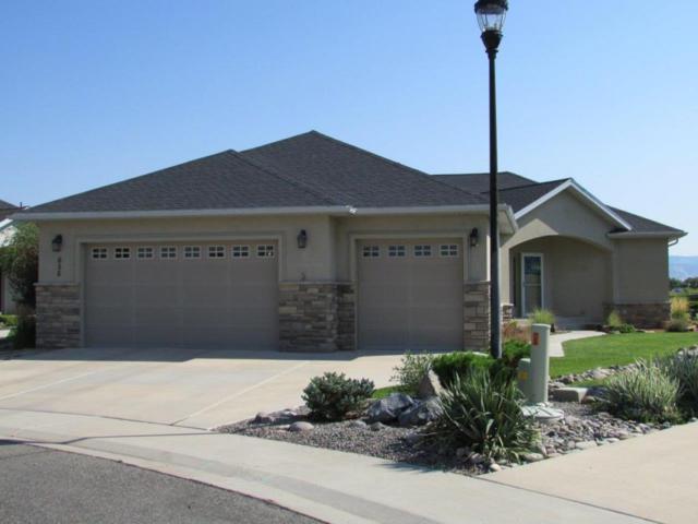 656 Badger Court, Montrose, CO 81403 (MLS #35309) :: Telluride Properties